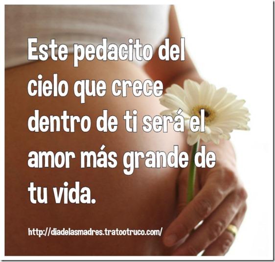 "Embarazada junto a flor"""